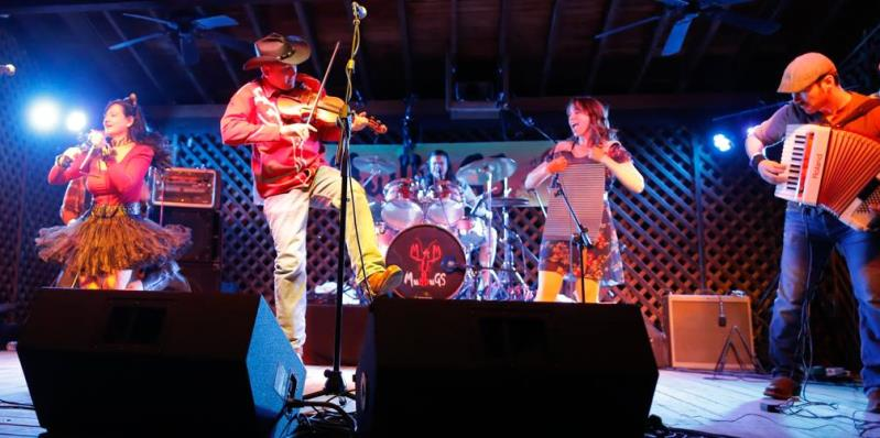 The Mudbugs Cajun & Zydeco Band in Concert